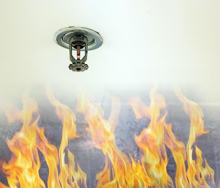 Water Damage Water Damage Can Be Caused By Your Sprinkler System In Your Apartment In Chicago
