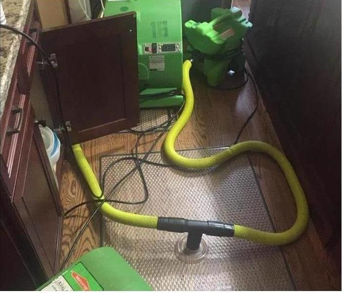 Why SERVPRO Why SERVPRO Treats for Microbial Growth when We Finish Water Removal Jobs in Chicago    Getting a Chicago residence restored after a disaster means an