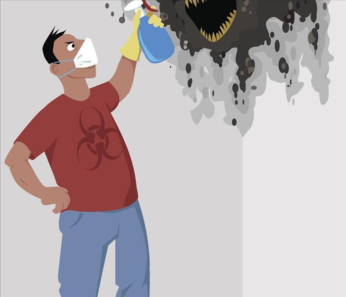 Mold Remediation Do You Know The Effects of Residential Mold Damage?