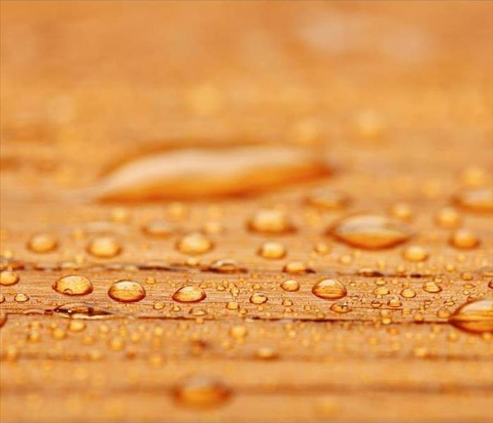 Water Damage Drying Hardwood Flooring after Water Removal in Your Chicago Home
